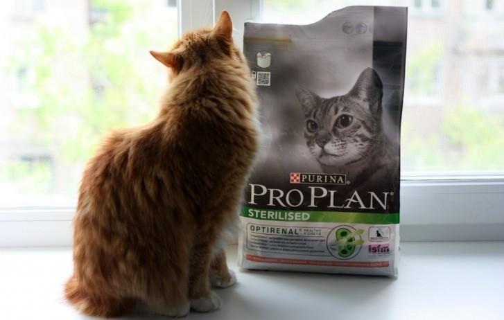 Корм Pro Plan