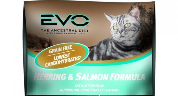 Innova EVO Cat